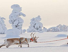 INVESTMENTS IN SUTATINABLE HIGH-END TOURISM IN LAPLAND